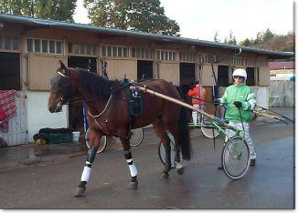 Aux courses de chevaux!