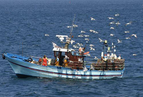 La pêche française est en crise