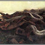 S comme….  Pour qui sont ces serpents qui sifflent sur vos têtes?